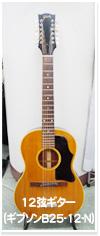 12弦ギター(ギブソンB25-12-N)